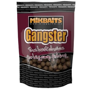 Mikbaits Boilie Gangster - G4 Squid Octopus 20mm 2,5kg