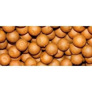 Imperial Baits Boilie Carptrack Osmotic Spice-5 kg 16 mm