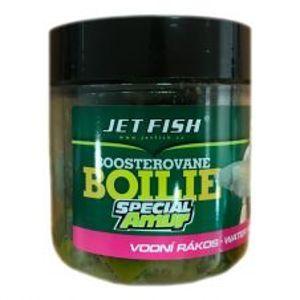 Jet Fish Boosterované Boilie Special Amur 20 mm 120 g-vodní rákos