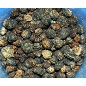 Jet Fish tygří ořech-divoký černý 500 g